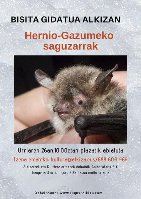 – CANCELADO – Los murciélagos: los pequeños grandes desconocidos de Hernio-Gazume (visita guiada el 26 de octubre)
